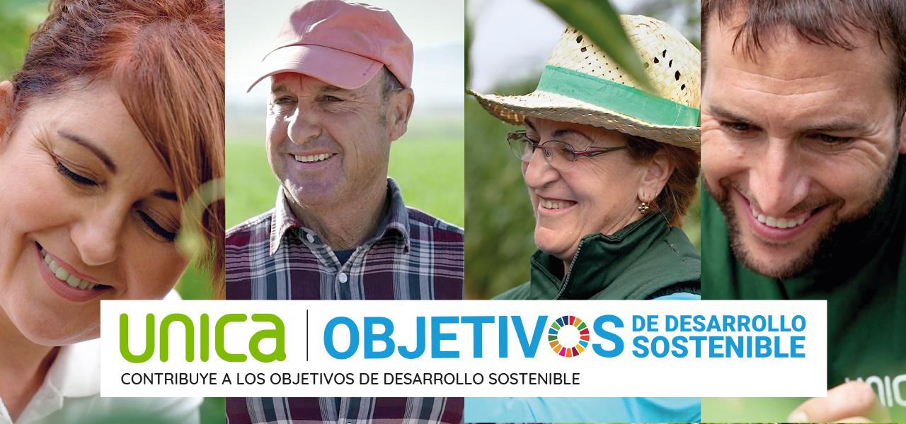 Unica - Desarrollo sostenible