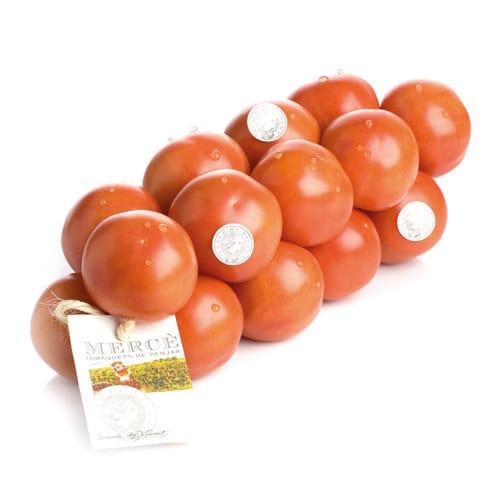 tomate-colgar